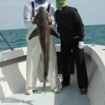 Catch tarpon, tuna, grouper, cobia, dolphin, snappers and more