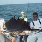 Sailfish caught in Marathon Florida with Silent Hunter Charters